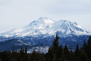 The Blue Otter School of Herbal Medicine is located in the mountains of Northern California, here showing Mt. Shasta.